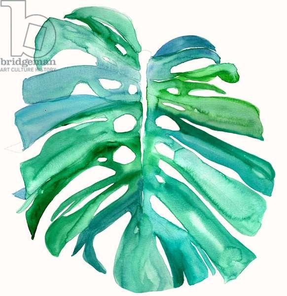 Monstera Leaf, 2015, watercolour
