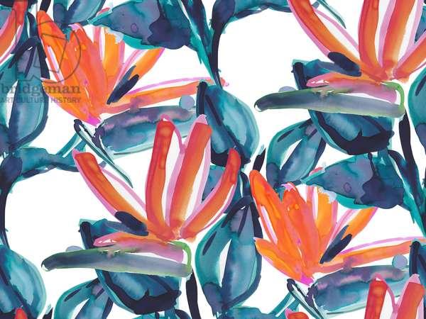 Bids of Paradise, 2015, watercolor