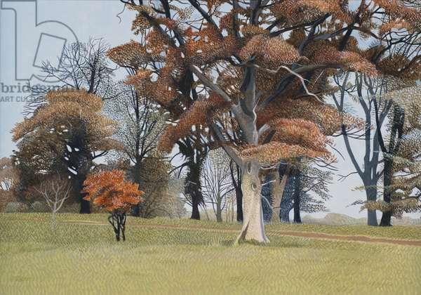 Lanhydrock in Autumn (oil on canvas)