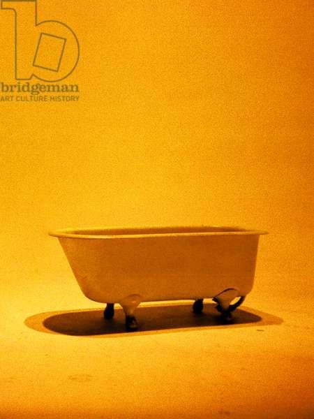 Bathroom #5, 2009