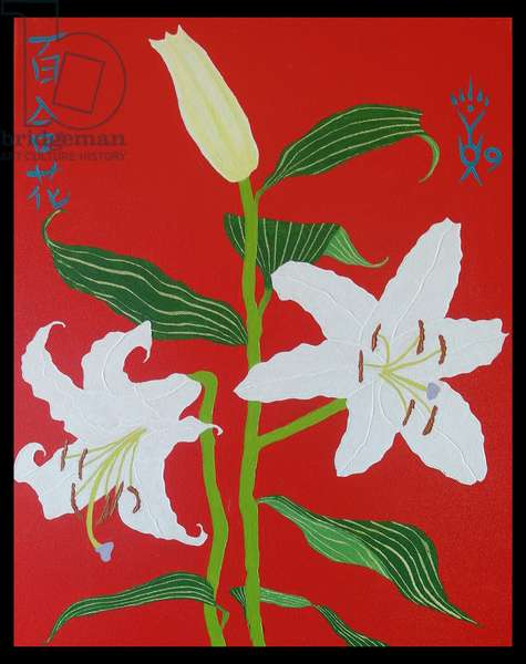 White lily on a red background no.2, 2008, oil on canvas