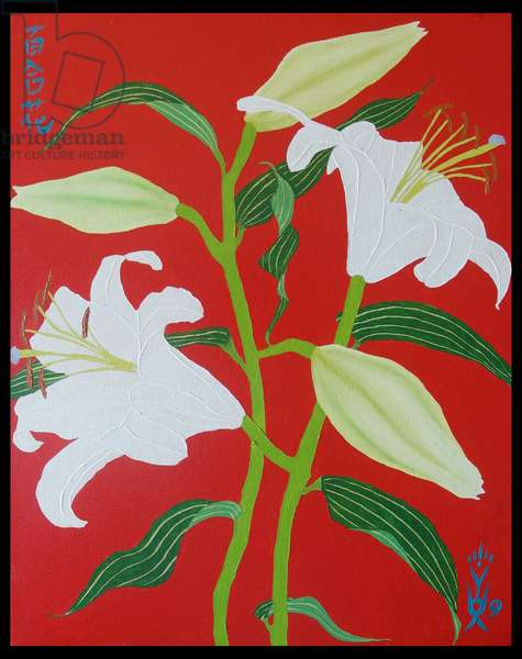 White lily on a red background no.1, 2008, oil on canvas