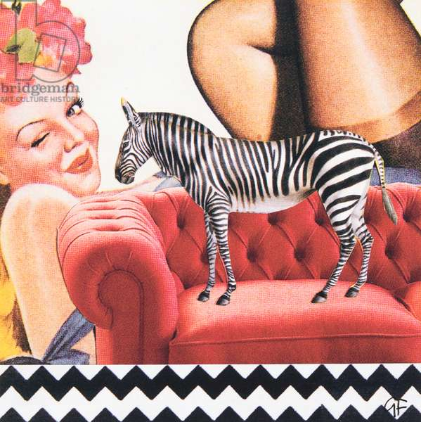 ZigZagZebra, collage