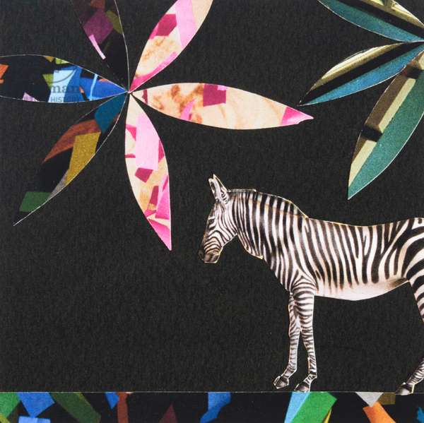Italian Zebra, 2019, collage
