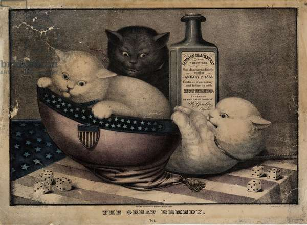 The great remedy, published by E.B. and E.C. Kellogg, Hartford Ct., and Phelps and Watson, New York, and F.P. Whiting, New York, c. 1863 (colour litho)