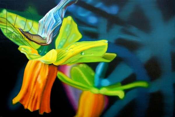Daffodil, 2006, (oil on canvas)