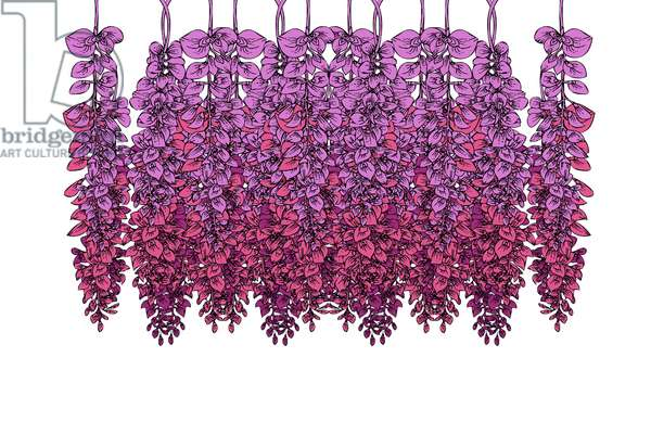 Hanging Wisteria, 2020 (digital)