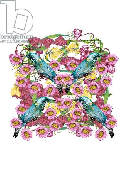 Bird Botanical, 2021 (coloured pencil, watercolour)