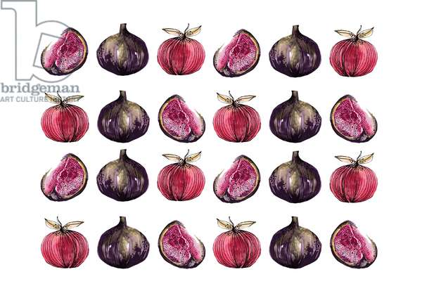 Apples & Figs, 2020 (watercolour & ink)