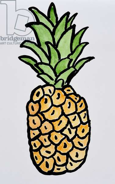 Pineapple, 2015 (watercolour on paper)
