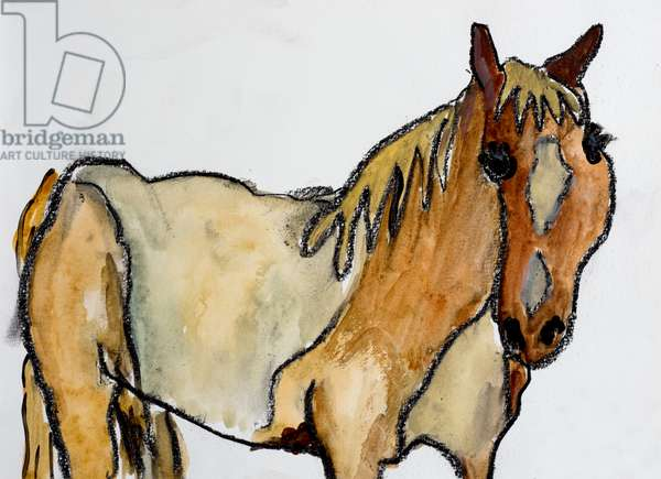 Horse in Menorca, 2015, (conte and watercolour on paper)