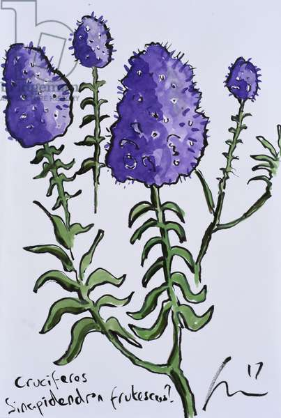 Purple Flowers, 2017, (watercolour on paper)