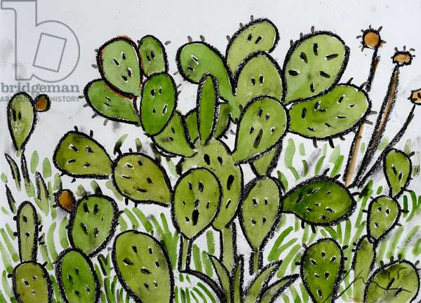 Cactus Plant in Menorca, 2015, (conte and watercolour on paper)