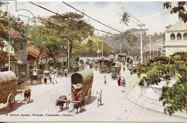 A Street Scene, Pettah, Colombo, Ceylon, c.1900-20 (hand-coloured photograph)
