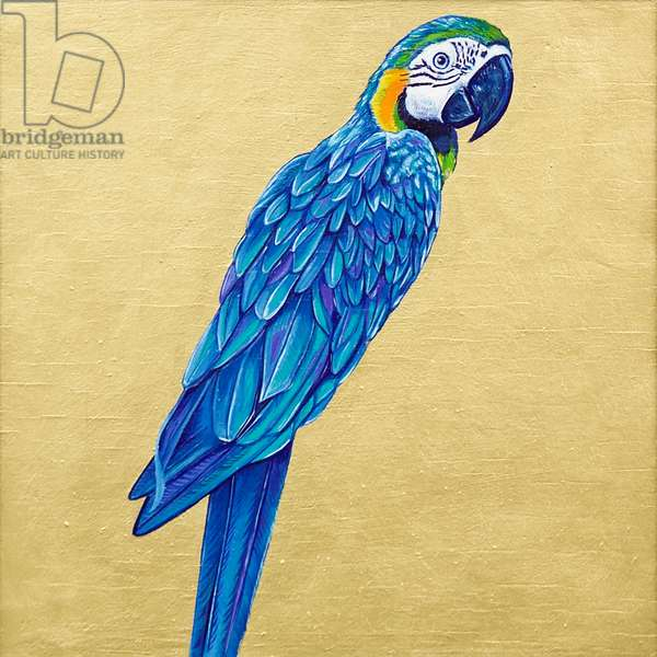 Blue Parrot, 2019, (oil on board)