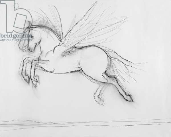 Pegasus Flying Over the Rhine, 2010, charcoal on paper, (from The Marriage of the Thames and the Rhine)  Photo credit Justin Piperger
