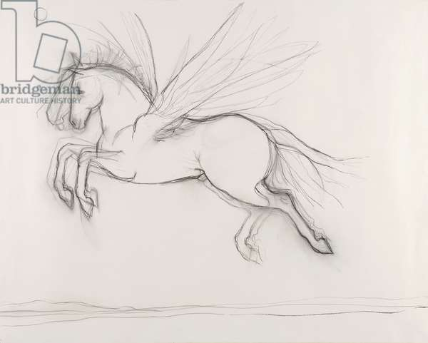Pegasus Flying Over the Rhine, 2010, charcoal on paper, (from the hand drawn animation The Marriage of the Thames and the Rhine)