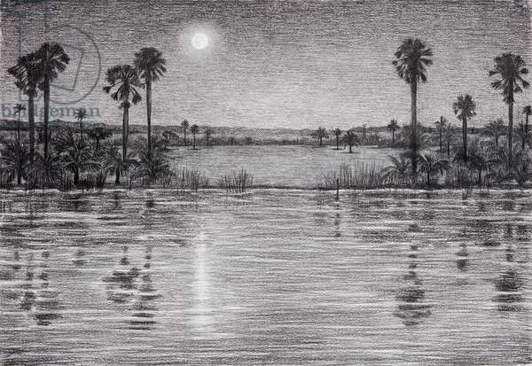 The Niger River in Moonlight, 2018, charcoal on paper (background for the hand drawn animation The Masque of Blackness)