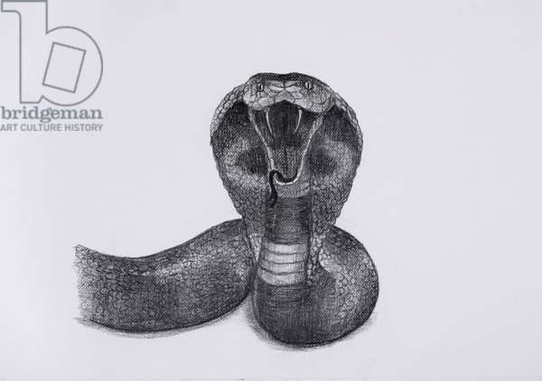 Snake, 2016, charcoal on paper, (detail from the hand drawn animation, The Masque of Blackness)