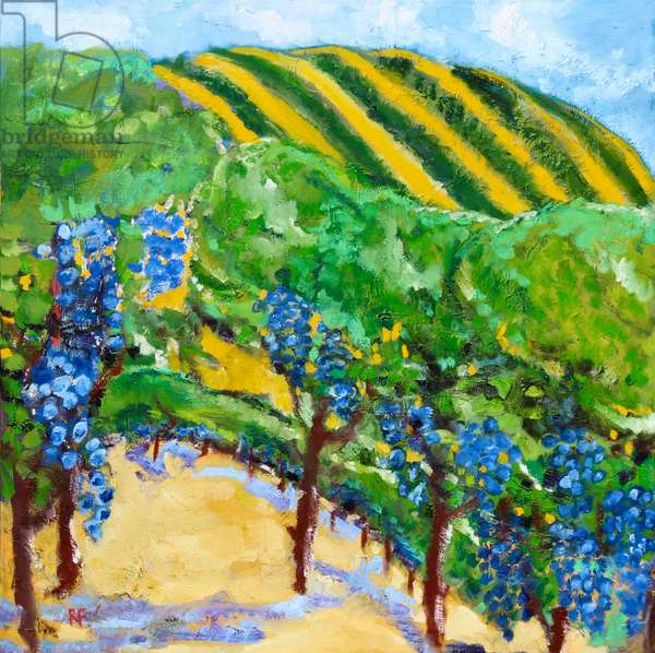 Vineyard and Rolling Hills, 2019, (oil on canvas)