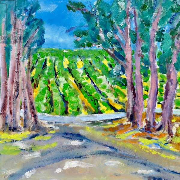 Vineyard Beyond the Trees, 2019, (oil on canvas)