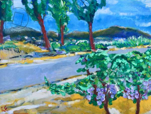 Roadside Vineyard, Napa, 2017, (oil on canvas)
