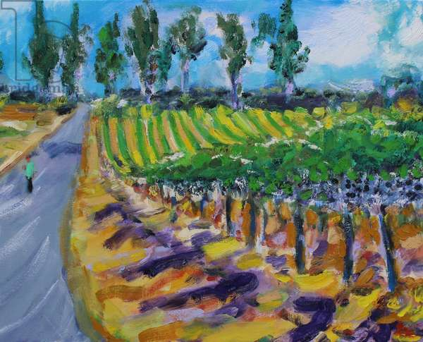 A Walk in Wine County, Napa, 2017, (oil on canvas)