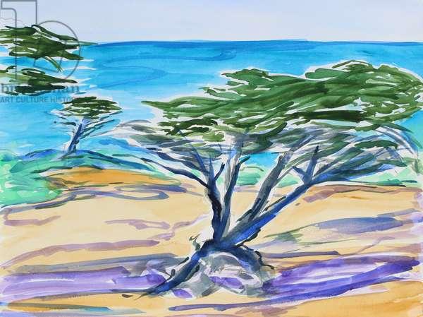 Cypress Tree, Carmel Bay, 2019, (watercolor on paper)