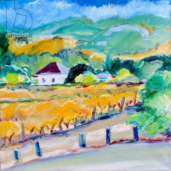 Vineyard in Autumn, Napa, 2020, (oil on canvas)