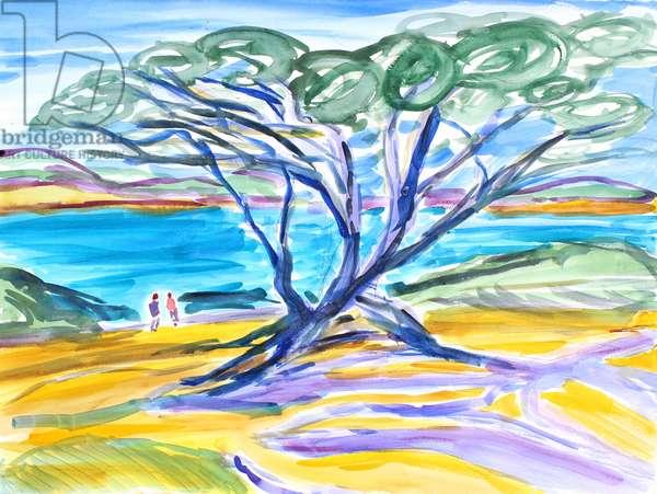 Cypress Tree, Carmel, 2019, (watercolor on paper)