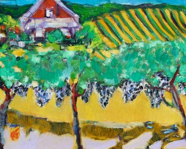Merlot Grapes, Napa, 2017, (oil on canvas)