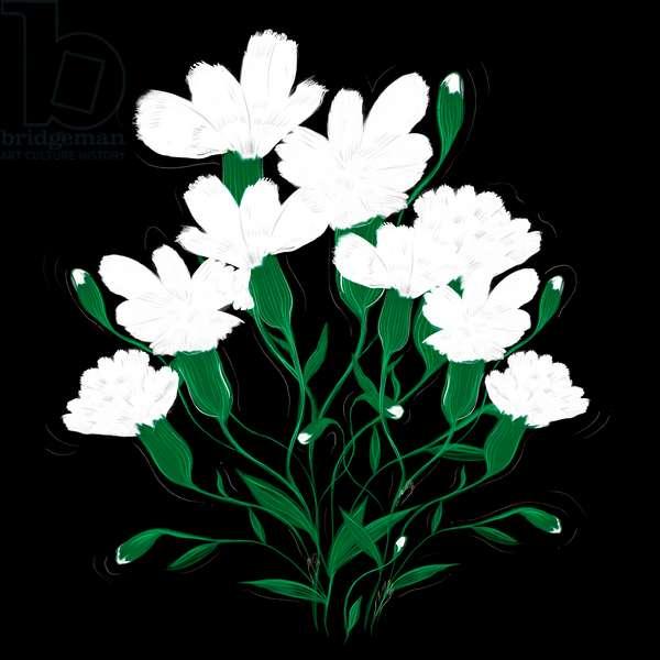 White Carnations, 2020, (digital)