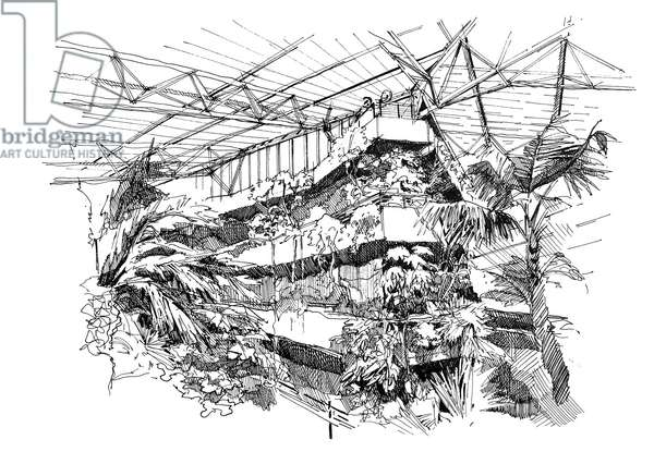 The Barbican Conservatory, 2020 (ink on paper)