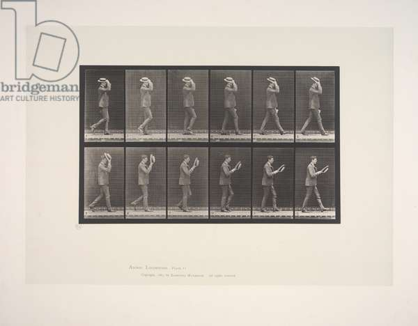 Animal locomotion: an electro-photographic investigation of consecutive phases of animal movements, 1872-1885, 1887 (collotype)