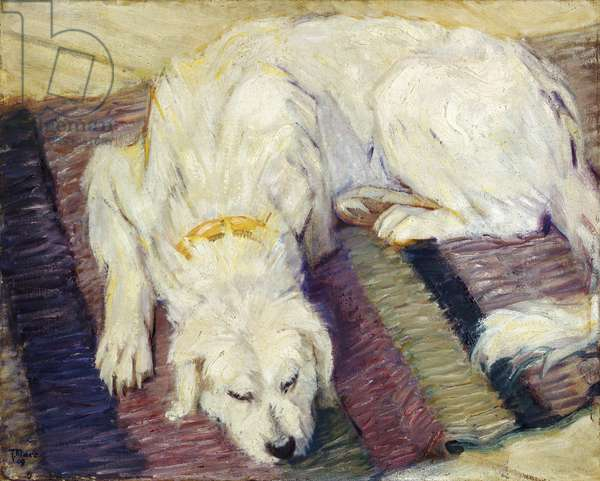 Reclining Dog, 1909 (oil on canvas)