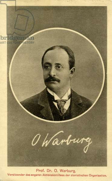 Otto Warburg (1859-1938), was a botanist and a member of the World Zionist Organization