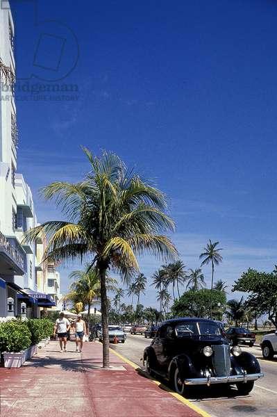 Miami Beach Art Deco: Topographic Views, c.2003 (photo)