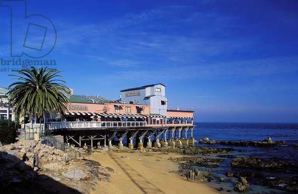 California Coast: Topographic Views, c.1997 (photo)