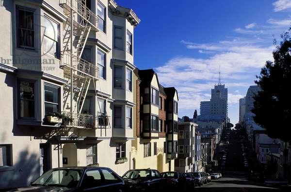 Streets of San Francisco: Topographic Views, c.1999 (photo)