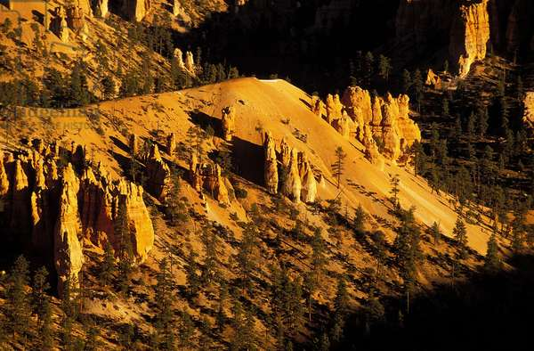 Bryce Canyon: Topographic Views, c.2001 (photo)