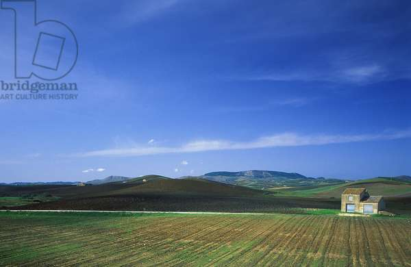 Italian Countryside: Topographic Views, c.1994 (photo)