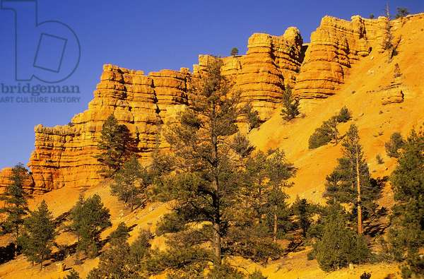 Bryce Canyon: Topographic Views, c.2001 (photo)