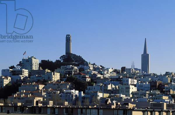 Coit Tower and Telegraph Hill, Topographic Views, c.1999 (photo)