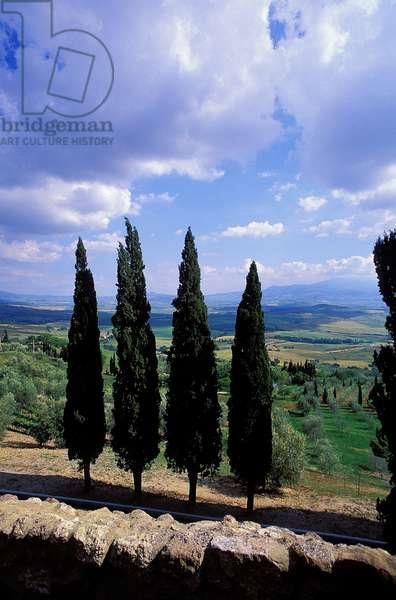 Italian Countryside: Topographic Views, c.1994 (photo)