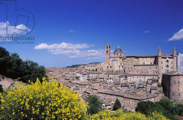 Urbino: Topographic Views, 1997 (photo)