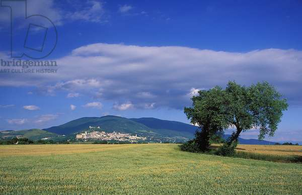 Assisi: Topographic Views, 1997 (photo)