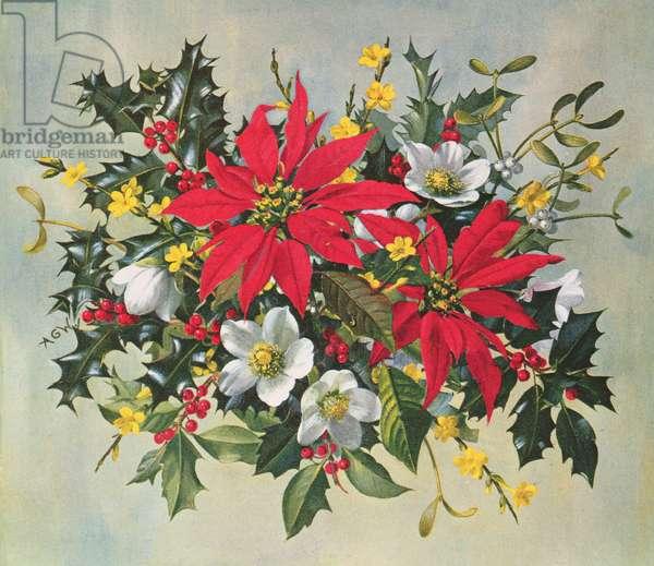 PB/274 Christmas Flowers
