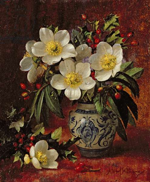 AB249 Still Life of Christmas Roses and Holly