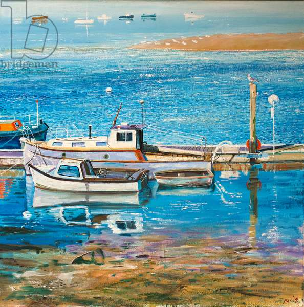 Gull Sentry, 2018 (oil on canvas)