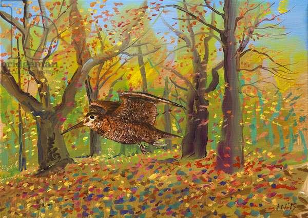 Woodcock, 2019 (oil on panel)